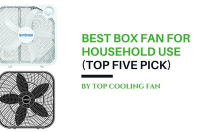 Finding the Best Box Fan for the Practical Home
